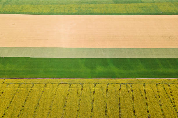 Colorful farm fields from above.