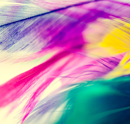 Colorful Feathers Background Stock Photo - Download Image Now