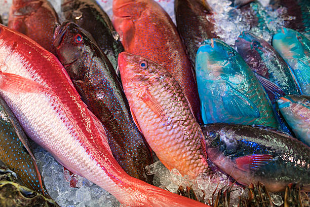 Colorful fish in a public market in Okinawa, Japan Colorful fish in a public market in Okinawa, Japan naha okinawa stock pictures, royalty-free photos & images