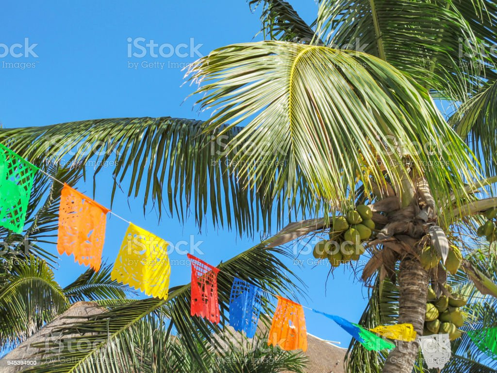 Colorful Flags Fly Over Palm Trees In Mayan Riviera Mexico Stock ...