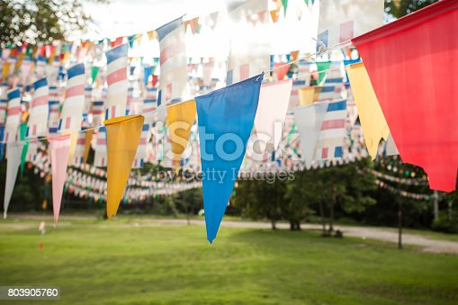 istock Colorful flags in garden 803905760