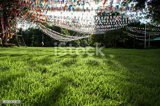 istock Colorful flags in garden 803905920