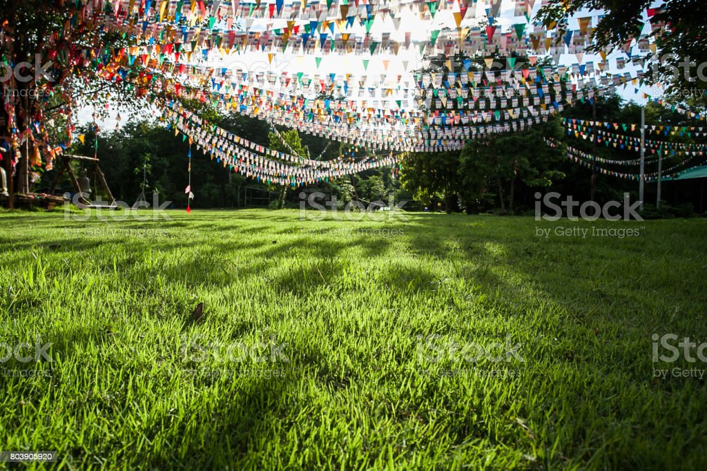 Colorful flags in garden stock photo