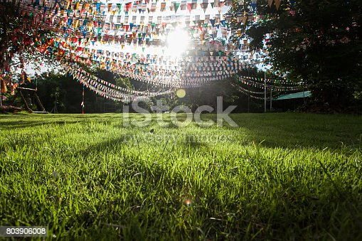 istock Colorful flags in garden 803906008