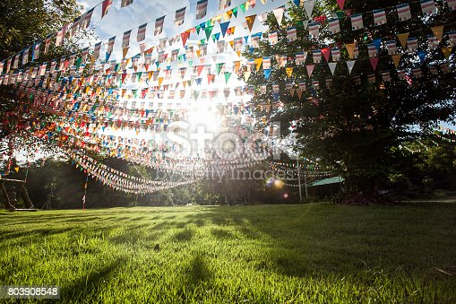 istock Colorful flags in garden 803908548