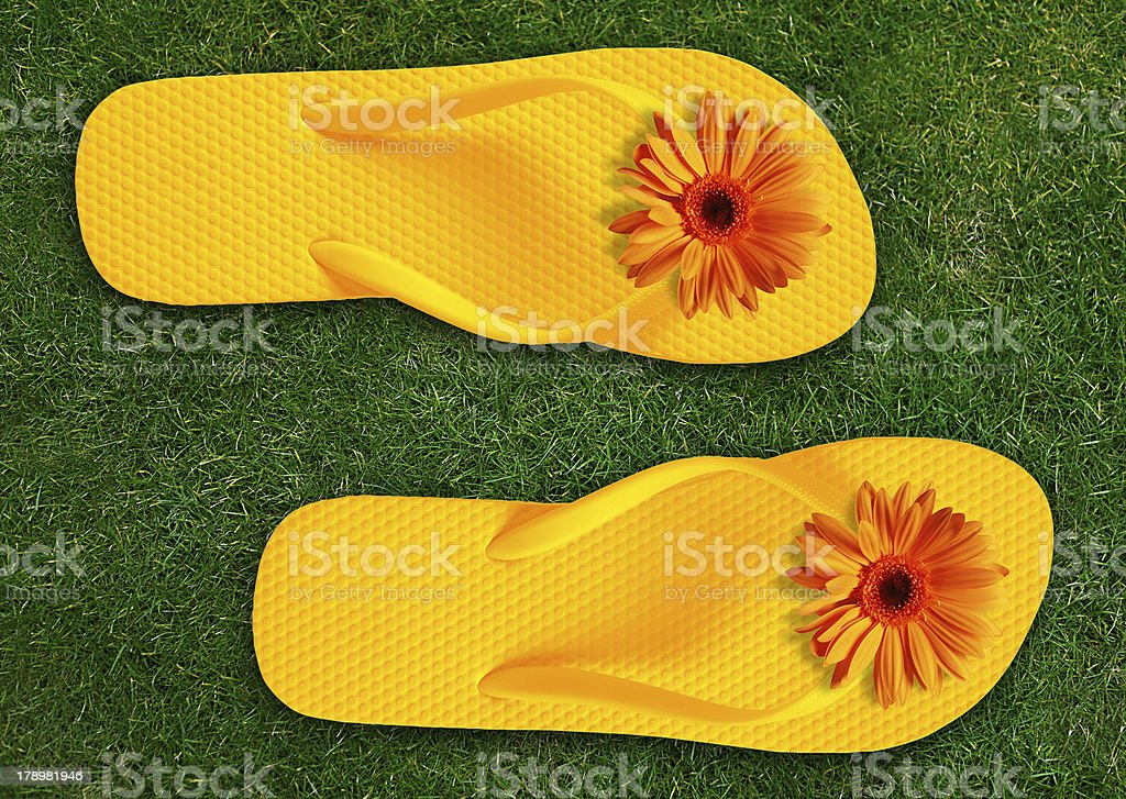 Colorful Flip Flops royalty-free stock photo