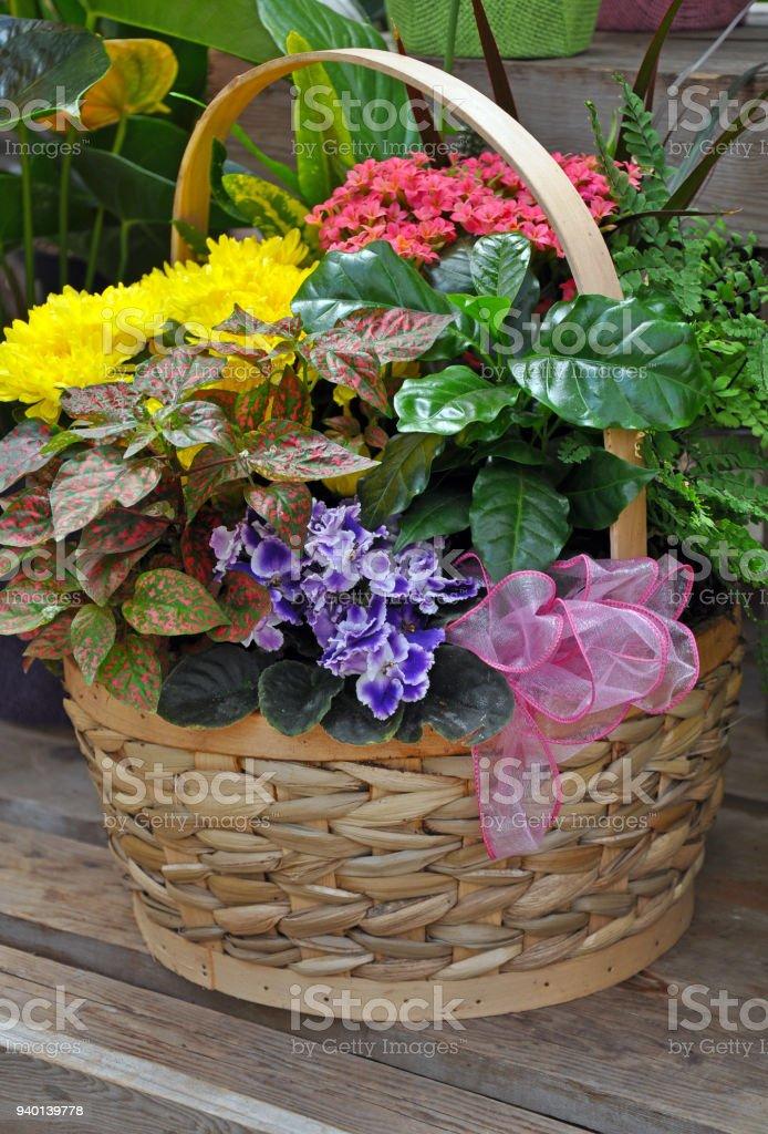 Bunte Blumengeschenkkorb Stock-Fotografie und mehr Bilder von Band ...