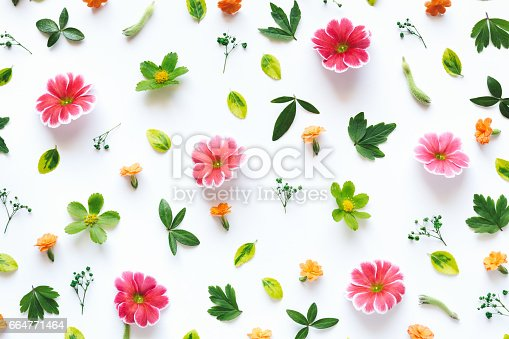 istock Colorful Floral Pattern 664771464