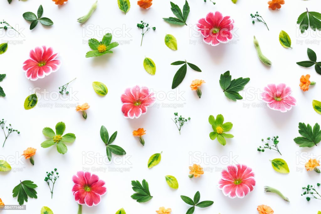 Colorful Floral Pattern stock photo