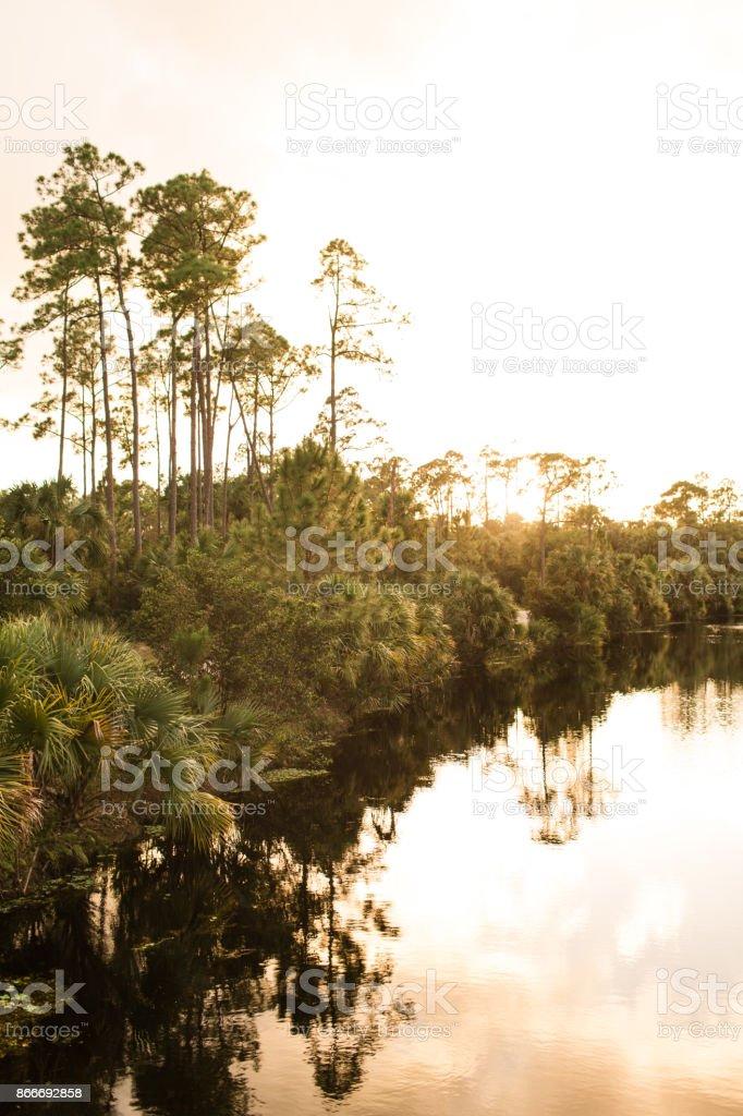 Colorful Florida Sunset stock photo