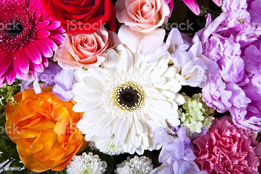 Colorful flower arrangement royalty-free stock photo