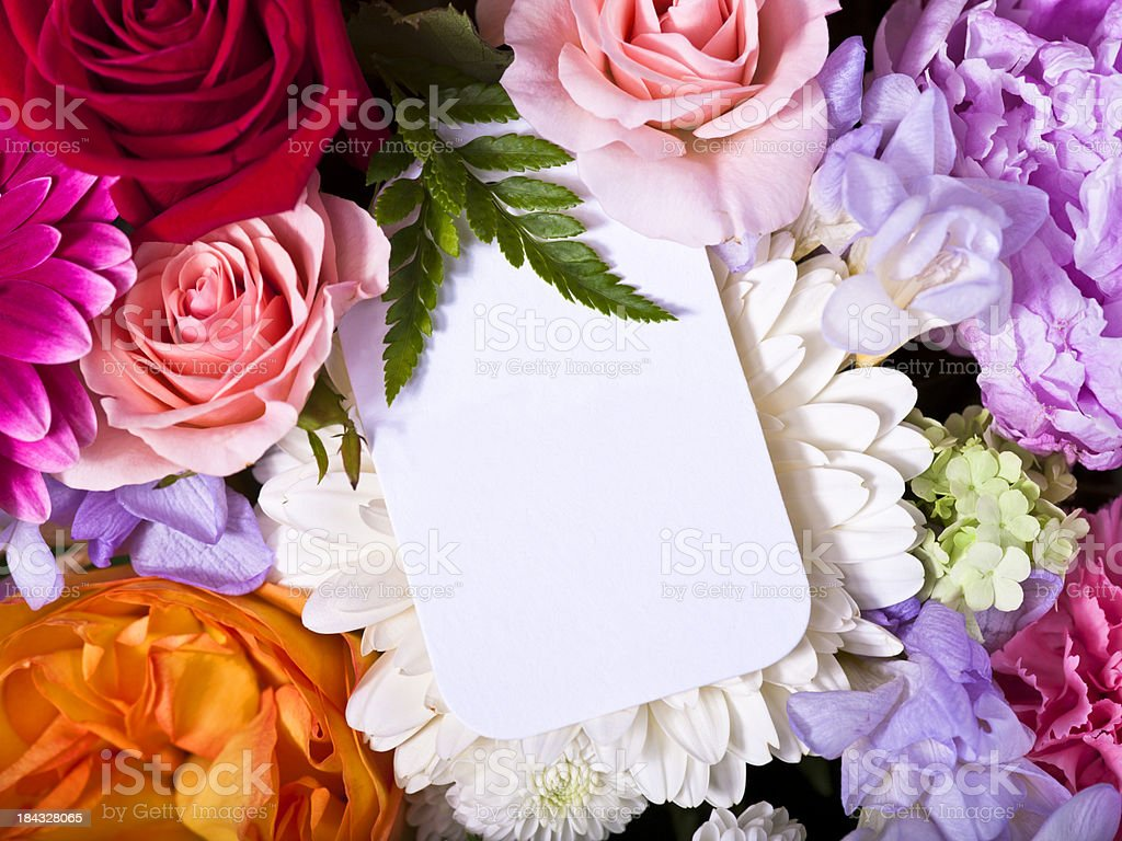 Colorful flower arrangement stock photo