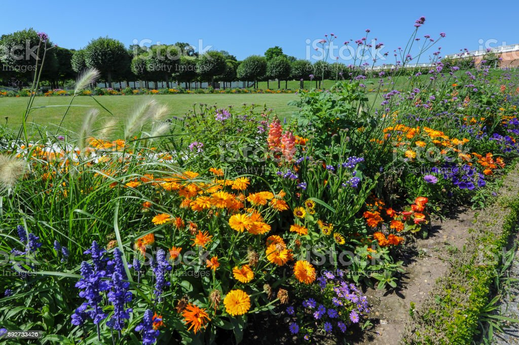 colorful flower bed with different colors in summer stock photo