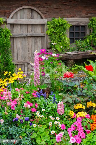 946294510 istock photo Colorful flower garden in front of cottage 469609090