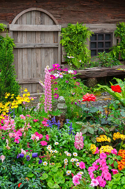 Colorful flower garden in front of cottage Landscaped backyard of a old house with flowering garden perennial stock pictures, royalty-free photos & images