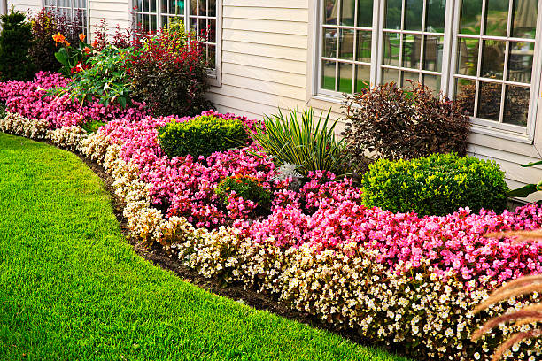 colorful flower garden - house with flowers stock photos and pictures