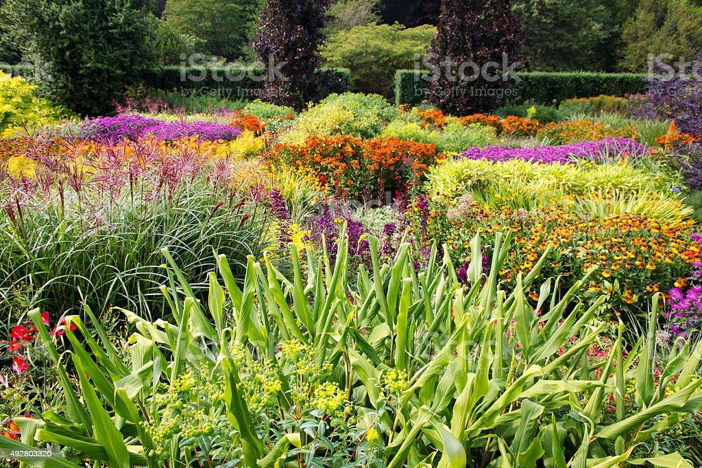 Colorful Flower Garden stock photo