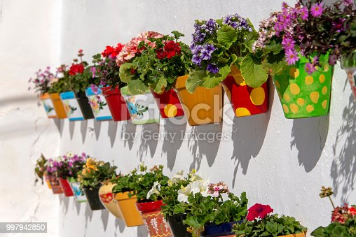 Flowerpots filled with blooming flowers hanging on a white stucco wall in Andalusia, Spain.