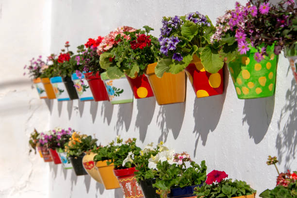 Colorful flower pots Flowerpots filled with blooming flowers hanging on a white stucco wall in Andalusia, Spain. courtyard stock pictures, royalty-free photos & images