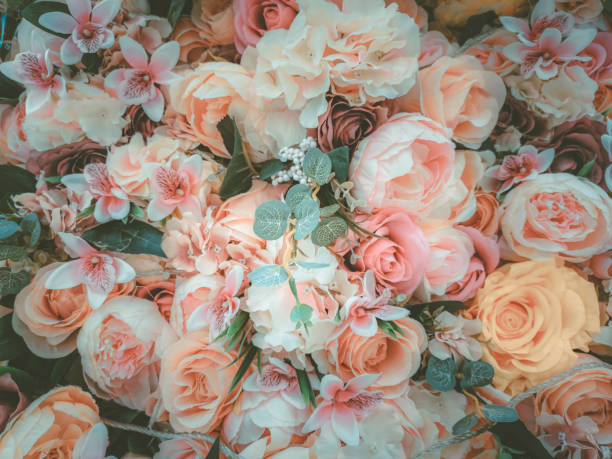 Colorful flower wall background picture id973679520?b=1&k=6&m=973679520&s=612x612&w=0&h=lyhu7u9jngstaur rye4amz1v3irxzwmlxietjc7jys=