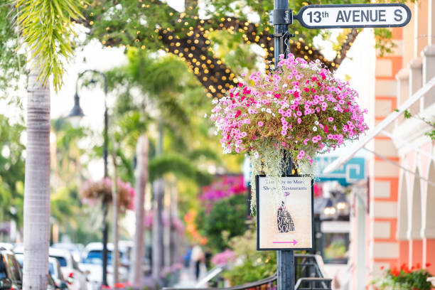 Colorful flowerpot hanging basket on avenue in Florida downtown beach city town during sunny day, street Naples, USA - April 29, 2018: Colorful flowerpot hanging basket on avenue in Florida downtown beach city town during sunny day, street naples florida stock pictures, royalty-free photos & images