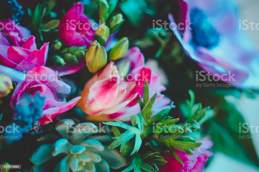 Colorful flowers abstract background. Fluorescent Vivid color stock photo