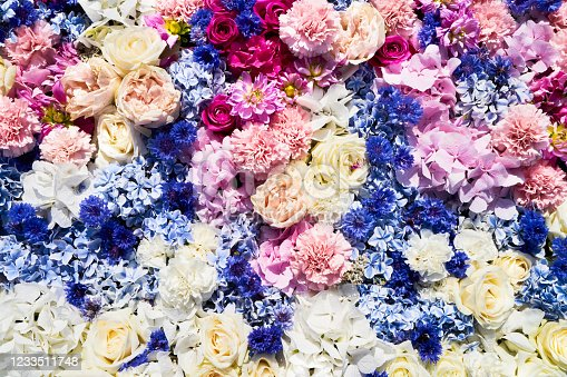 Colorful flowers background. Summer concept. View from above