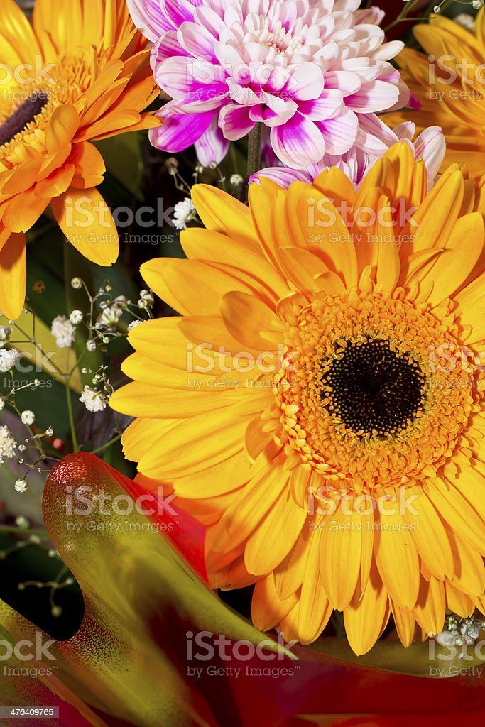 Colorful flowers bouquet royalty-free stock photo