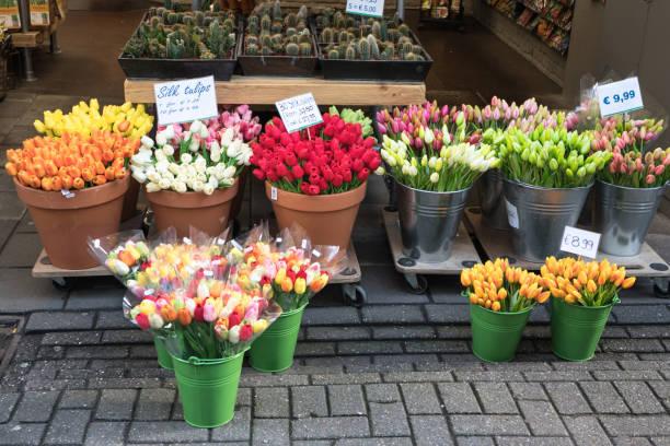 bunte blumen zum verkauf an blume markt, amsterdam, niederlande - günstig nach amsterdam stock-fotos und bilder