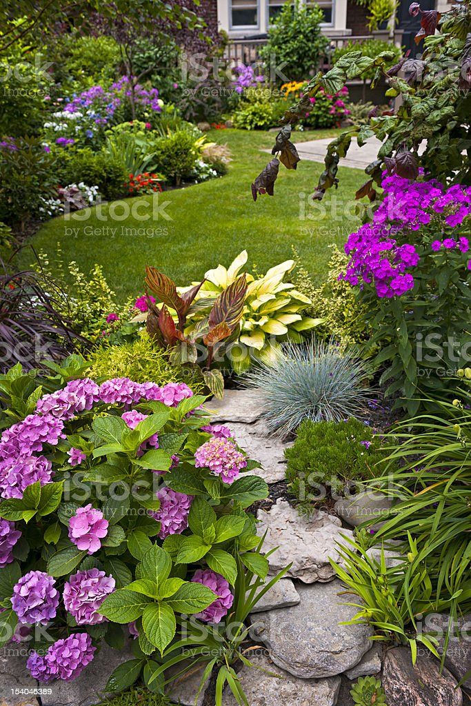 Colorful flowers in a neat garden stock photo