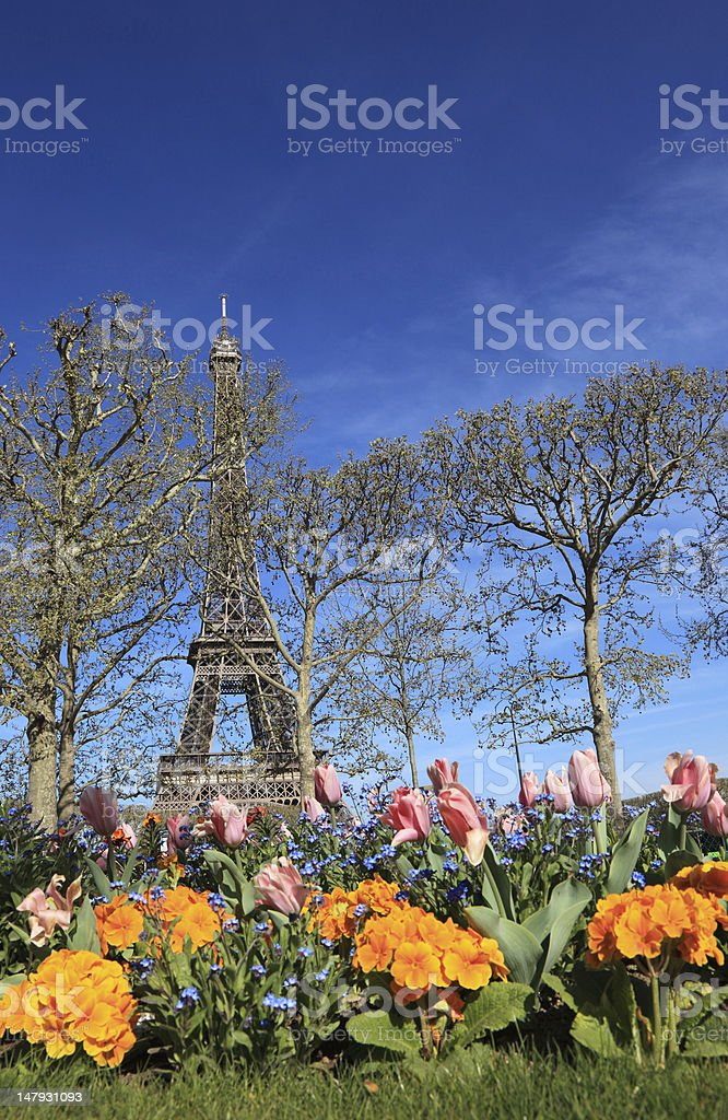 Colorful flowers in Paris during the spring. royalty-free stock photo