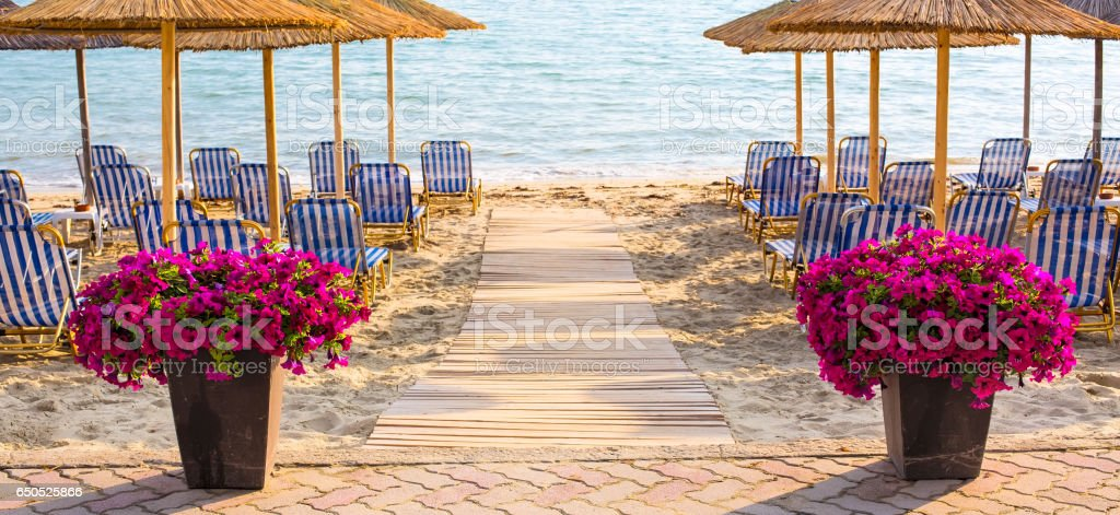 Colorful flowers near wooden path to sea among umbrellas at sandy beach stock photo