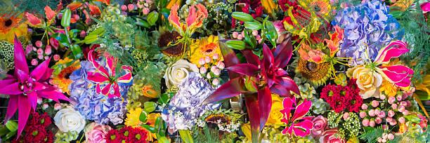 Colorful flowersbanner picture id637507918?b=1&k=6&m=637507918&s=612x612&w=0&h=w6wyay5hd8xzxehyzxhjnpmscsdytwdiyonwf7gvjda=