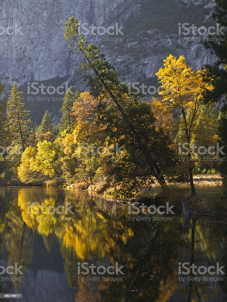 colorful forest reflection on a yosemite river. royalty-free stock photo