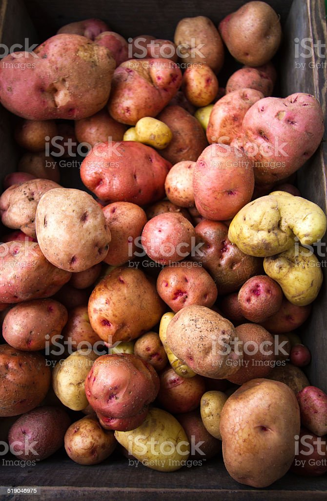 Colorful Fresh (Raw) Potatoes at Market, Brown Wood Box stock photo