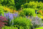 Botanical garden of Gothenburg, Sweden