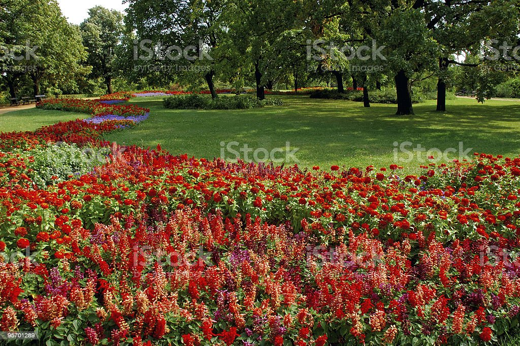 Colorful Garden with Mature Trees royalty-free stock photo