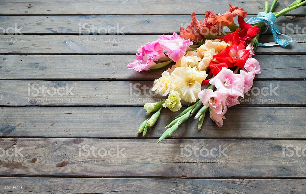 Colorful gladiolus on a wooden background stock photo