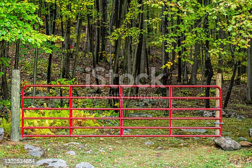 istock Colorful green foliage in autumn fall season in Dolly Sods, West Virginia in National Forest Park with bright red gate closed to forest woods trees 1322534684