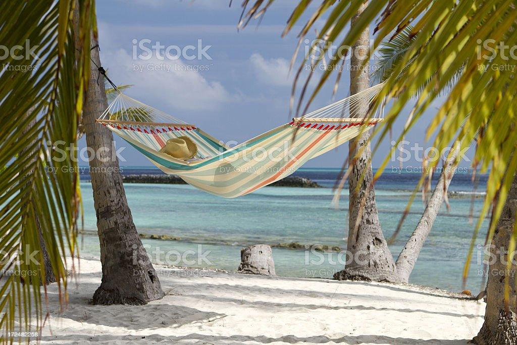 Rede na praia colorida - foto de acervo