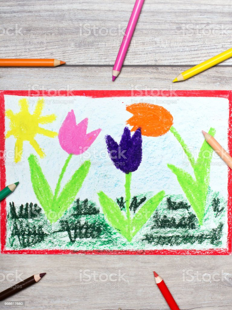 Colorful Hand Drawing Tree Beautiful Tulip Flowers And Sun