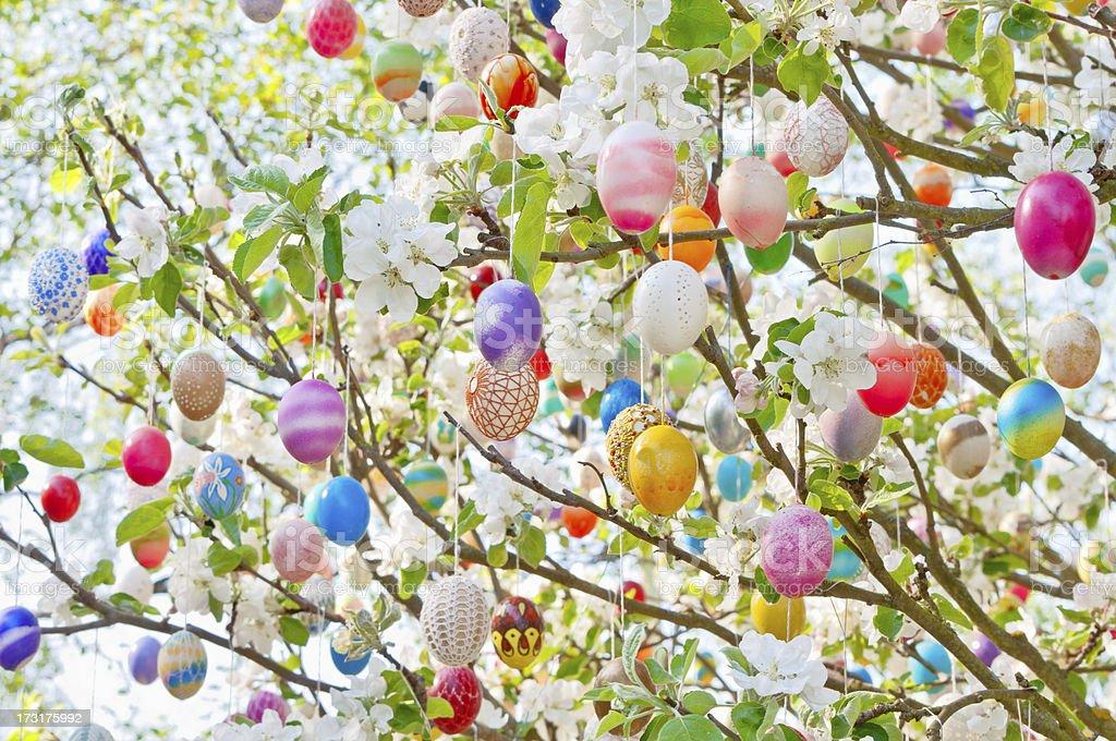 Colorful handmade Eastereggs on an apple tree royalty-free stock photo