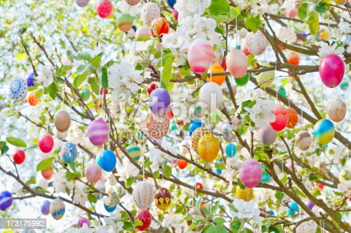 eastereggs hanging on apple tree. A lot of colorful and handmade eggs. Highkey. More of this series: