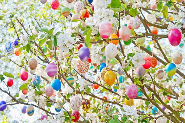 bunte handgemachte eastereggs auf einem apple tree - deutsche bäume stock-fotos und bilder