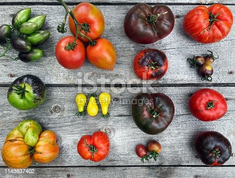 Colorful heirloom tomatoes fresh from my organic country garden.