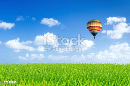 530709531 istock photo Colorful hot air balloon over green fields 187825958
