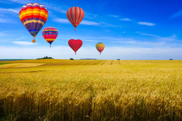 Colorful hot air balloons flying over reaped field and green hill view on a sunny day at sunset montagne de Reims, France Colorful hot air balloons flying over reaped field and green hill view on a sunny day at sunset montagne de Reims, France marne stock pictures, royalty-free photos & images
