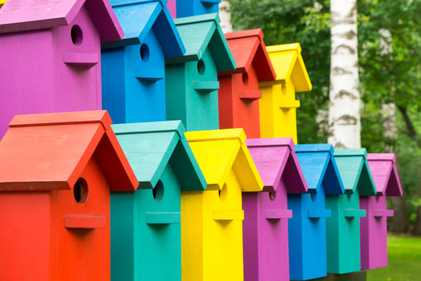 Colorful houses for birds. stock photo