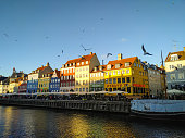 Colorful houses in the Nyhavn harbor. Birds fly over harbor in the blue sky.