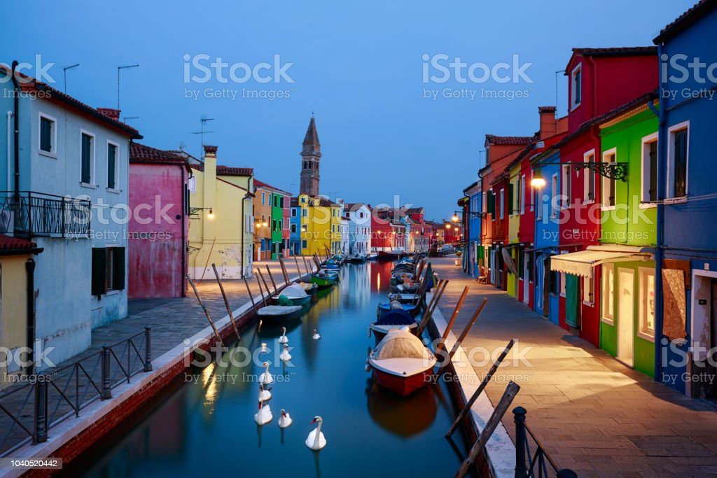Colorful Houses of Burano with Swans, Venice, Italy. Burano Island at blue hour, Venice, Italy. Architecture Stock Photo